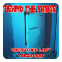 behind the fridge